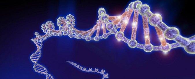 Dal brodo primordiale alla prima cellula