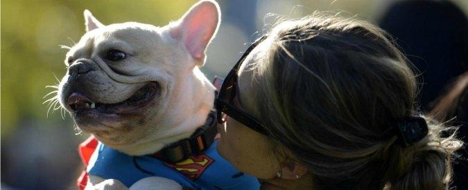 """Cani, """"capiscono il linguaggio umano o almeno cercano di farlo"""""""