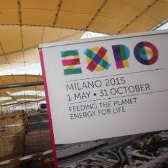 expo 240