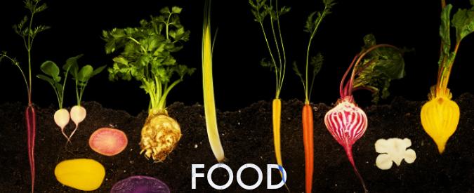 FOOD, tutto il mondo del cibo tra scienza e gusto