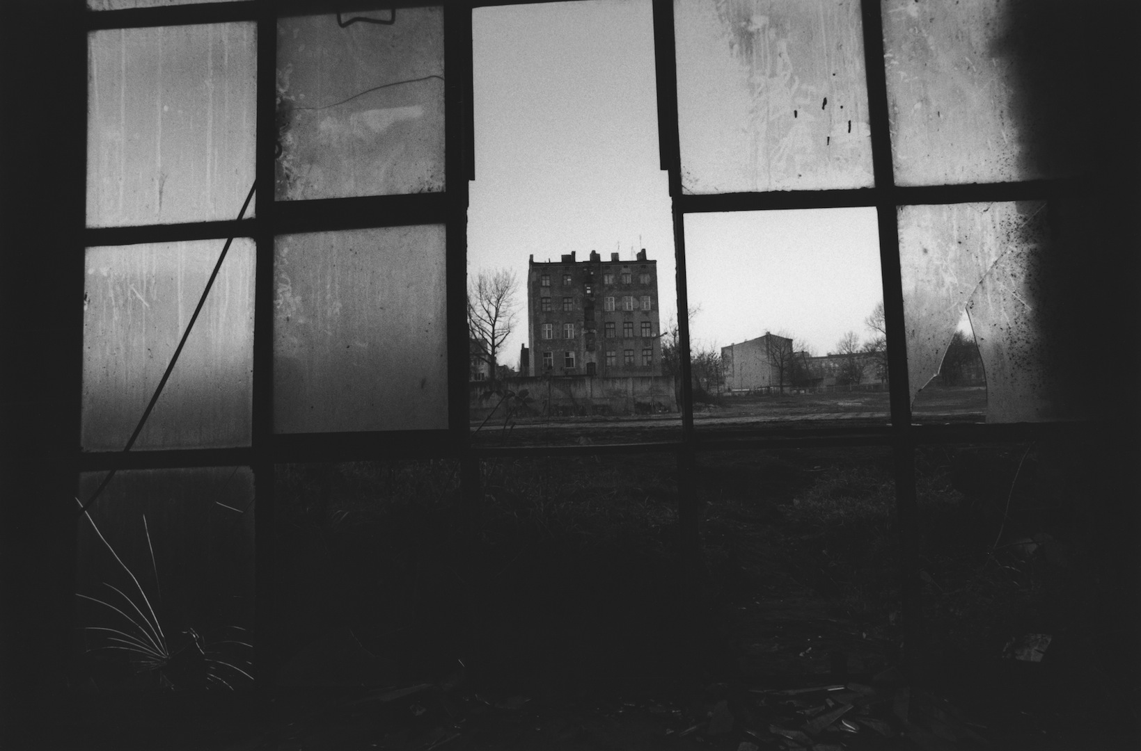 Fotografia: David Lynch, ultima chiamata per vedere le immagini in mostra a Bologna
