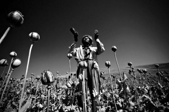 De Narcoticis – Foto © Alessandro Scotti (Premio Ponchielli 2004)