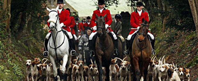 """Inghilterra, Tory e Ukip vs ambientalisti: """"Ripristinare la caccia alla volpe"""""""