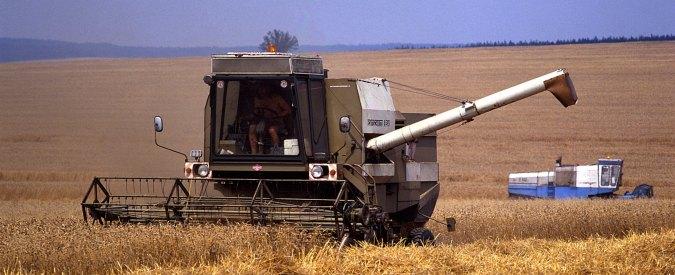 Legge di stabilità: meno fondi per le assunzioni giovanili, il governo colpisce l'agricoltura