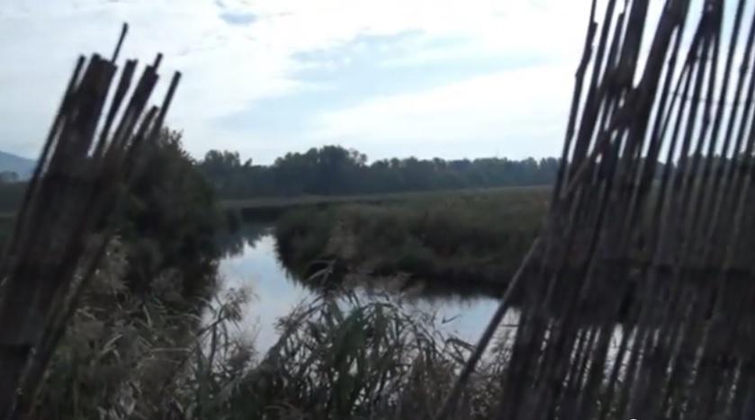 """Versilia, la discarica di rifiuti speciali a 200 metri dal lago """"area protetta"""""""