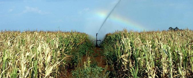 Energia da scarti agricoli, ancora aliquote agevolate. Ma problemi solo rimandati