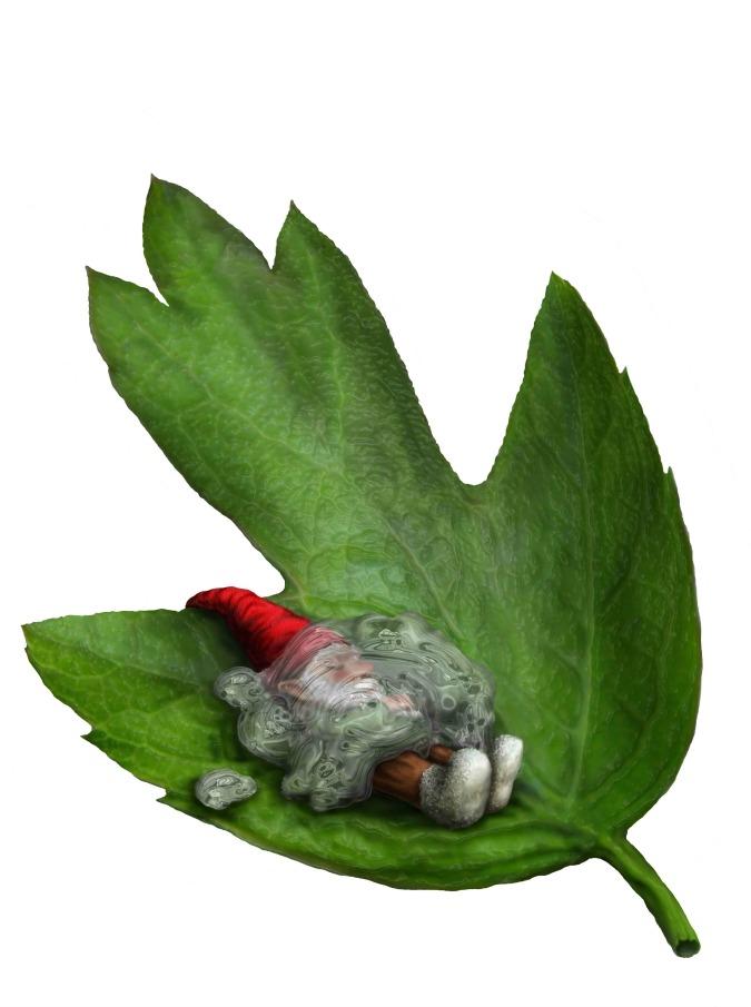 16-Arbor Gnomica905