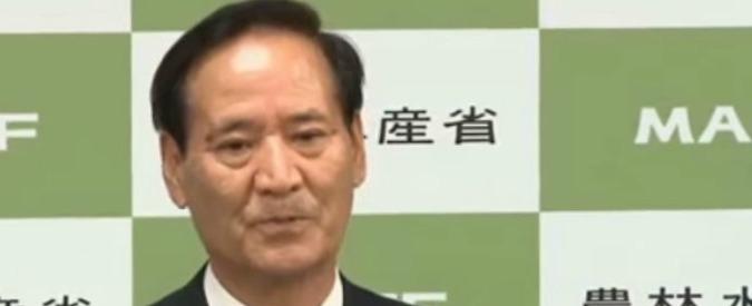 Giappone, il ministro dell'Agricoltura si dimette per una donazione di 7mila euro