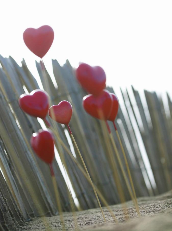 Heart sticksVisions / ReportersOrig. filename : visi33052.jpg
