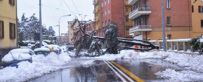 Bologna, servizio mensa saltato a causa del maltempo: Nas in azione