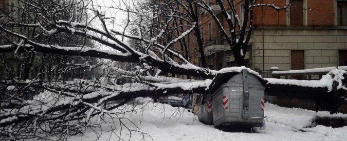 Allerta meteo, scuole aperte a Bologna. Ma salta il servizio mensa per i bambini
