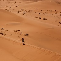 La solitudine del viaggiatore