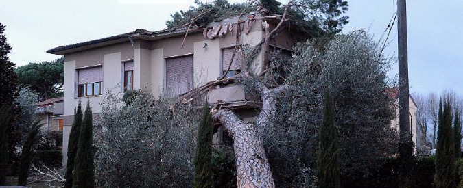 Allerta meteo al Centro-Nord: due morti.  In Val Gardena albero cade su funivia