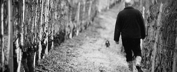 Il vino della settimana: Langhe Doc Riesling Herzu 2013 – Ettore Germano
