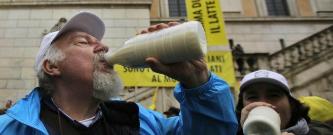 """Prezzi latte, l'Antitrust indaga. Coldiretti: """"Da stalla a scaffale ricarico del 371%"""""""