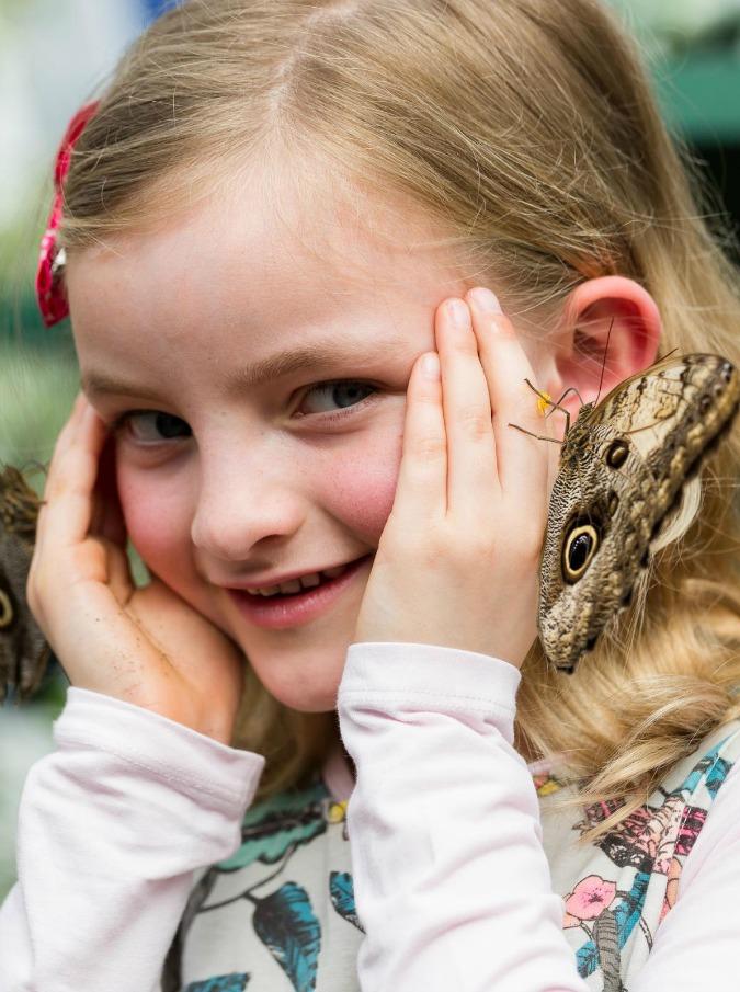 """Mindfulness, anche i bambini si avvicinano alla meditazione: """"Può aiutarli a trovare serenità e concentrazione"""""""