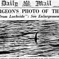 Il Daily Mail riporta la notizia dell'avvistamento