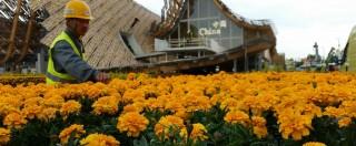 Expo 2015, pronti i padiglioni. Dalla Cina al Qatar tra giochi di luce, fiori, acqua e piante