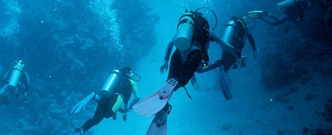 """Sub morto in Sardegna, """"sul corpo morsi di un grosso pesce, forse uno squalo"""""""