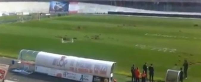 Varese, raid ultras allo stadio: campo impraticabile. Gara con l'Avellino rinviata