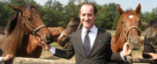 Zaia cavalli  675