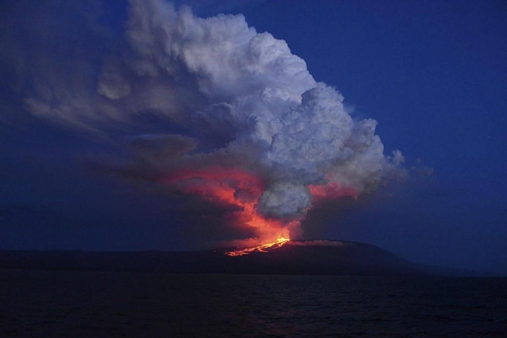 Il vulcano Wolf erutta fumo e lava – Isola Isabela