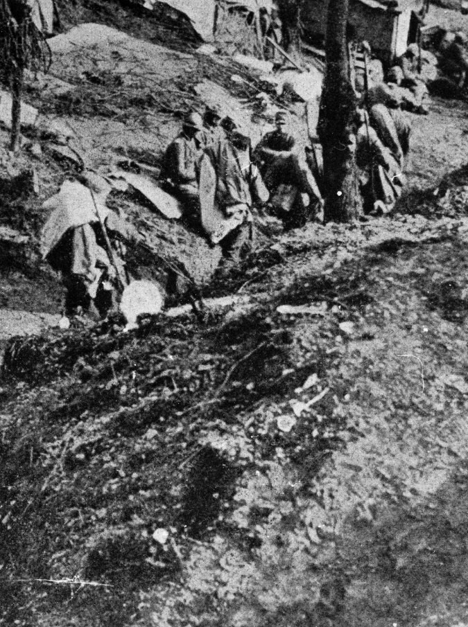 """Prima guerra mondiale, il referendum silenzioso che portò gli italiani a """"convertirsi"""" alla guerra: """"Non morirono per niente"""""""