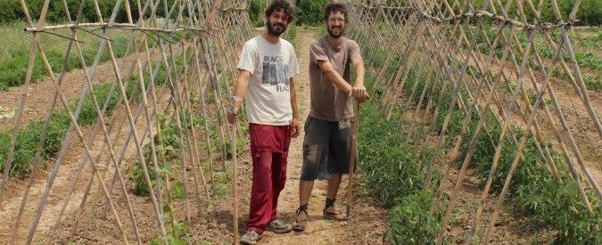 'Sono laureato, ma col mio orto in Spagna ho trovato la fiducia che manca in Italia'