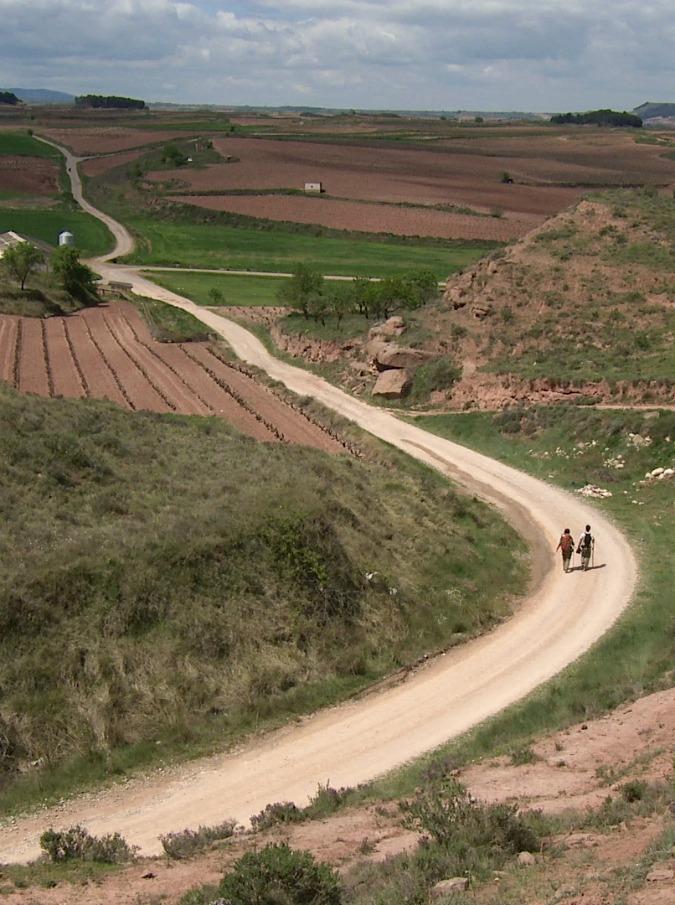 Anno dei cammini, da Assisi alla via Francigena: da Nord a Sud ecco i dieci migliori percorsi d'Italia
