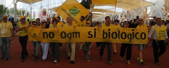 """Expo 2015, prima protesta tra padiglioni. Legambiente: """"No ogm, sì al biologico"""""""