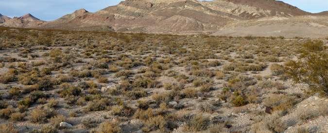 Cina, un oceano salato sotto il deserto: '10 volte più grande dei Grandi Laghi Usa'