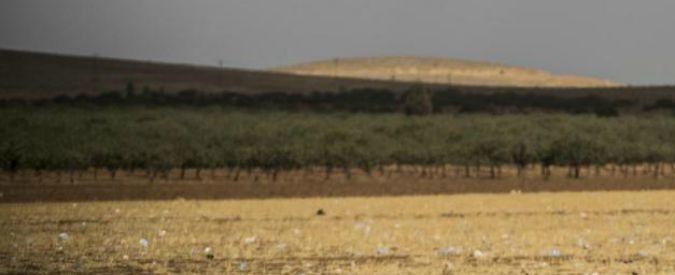 """Clima, Cnr: """"Un quinto del territorio italiano è a rischio desertificazione"""""""