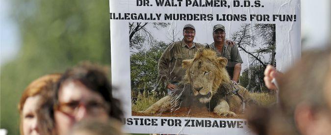 Leone Cecil, il fratello non è stato ucciso. E ora altri cacciatori difendono il killer