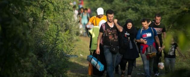 migranti 675 275