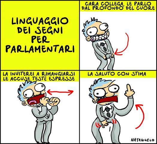 Linguaggio dei segni per parlamentari