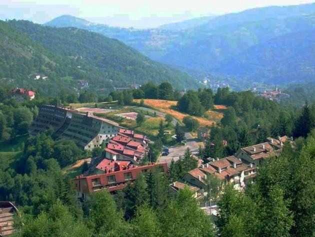 SaintGréeViola-Cuneo