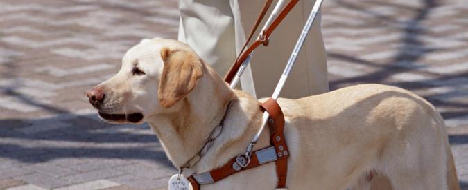 """Roma, cieca va col cane guida a fare denuncia alla polizia. Gli agenti la bloccano: """"Lui non può salire"""""""