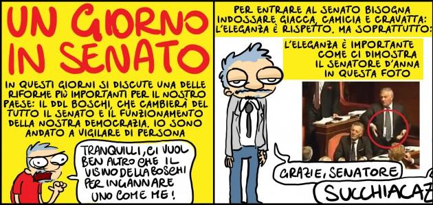 senato1_web