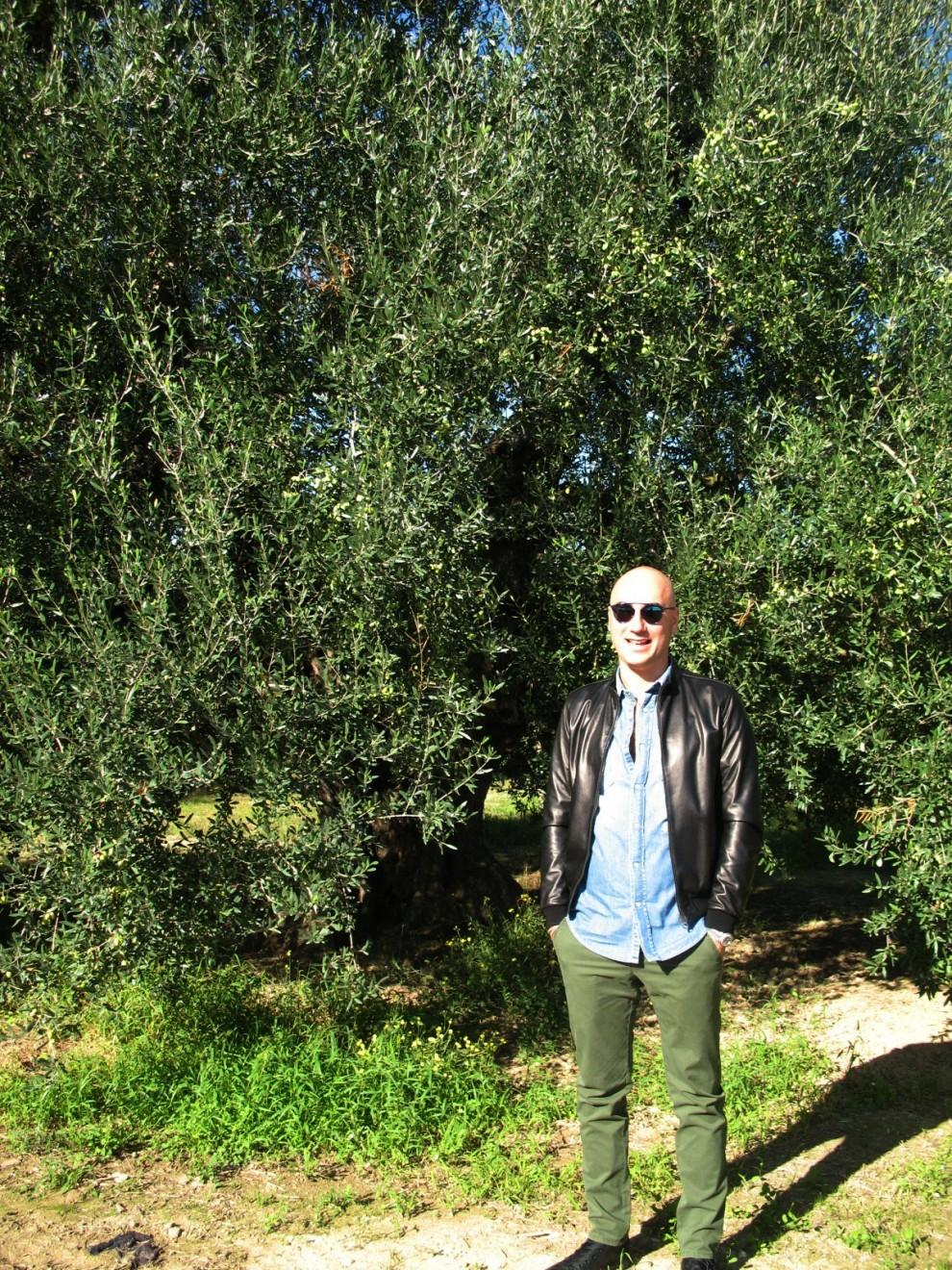 Savino Muraglia davanti all'olivo più antico del suo frantoio, 450 anni