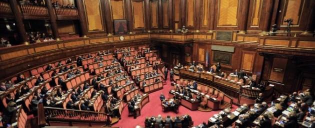 senato 675