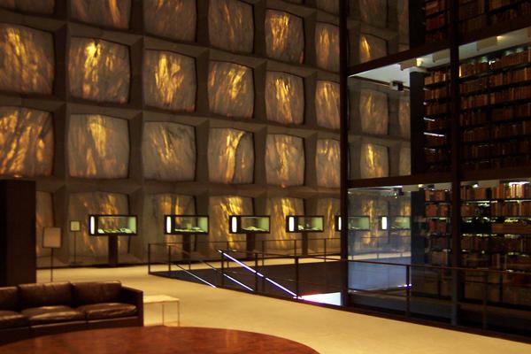 Camera Da Letto Con Tetto In Vetro Immersa Sottacqua Architettura Design : Camera da letto con tetto in vetro immersa sottacqua