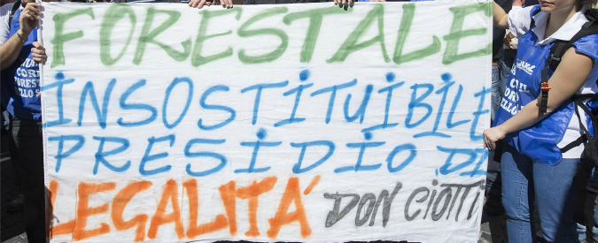 """Legge Madia, Gabrielli: """"L'accorpamento Forestali-Carabinieri non è scelta felice"""". Sindacati: """"Si rischiano migliaia di ricorsi"""""""