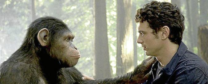 Scimmie e topi con Dna umano per studiare Alzheimer, Parkinson e autismo