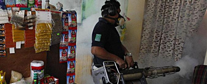 """Virus Zika, esperti: """"Possibile correlazione con microcefalia fetale. Tempi lunghi per vaccino"""""""
