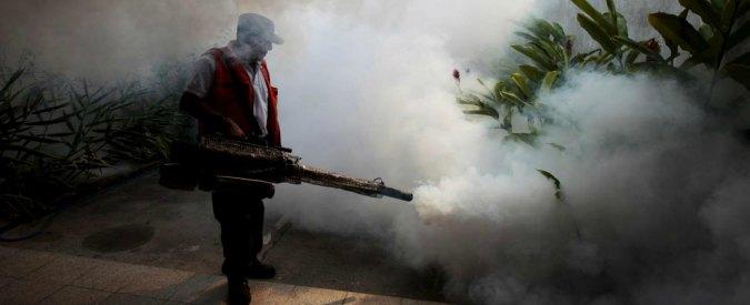 """Virus Zika, """"minaccia più grande di Ebola"""". Riunione di emergenza dell'Oms"""