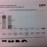 Expo 2015 spa risultati 2015