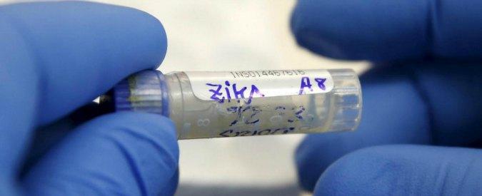 """Virus Zika, aumentano casi di bimbi con microcefalia in Brasile. Ditta indiana: """"Abbiamo sviluppato un vaccino"""""""