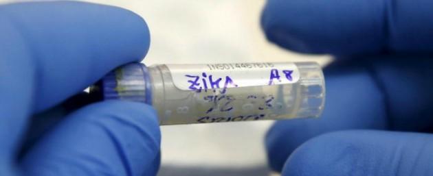 zika-6751