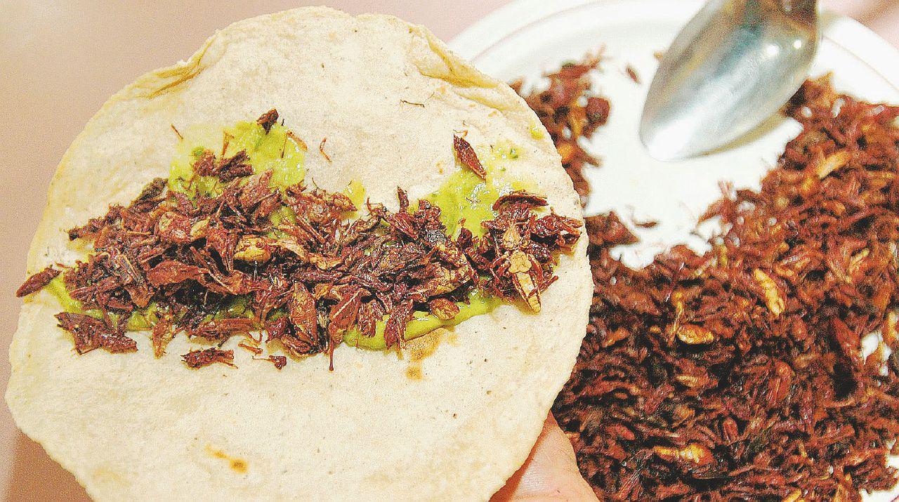 Chi ama il cibo buono, pulito  e giusto si prepari agli insetti