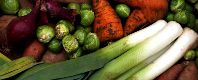 """""""Con dieta vegan in tutto il mondo 8,1 milioni di morti in meno nel 2050"""""""